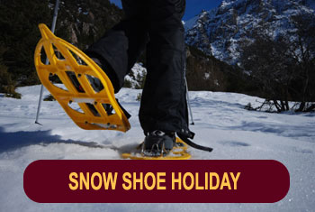 Snowshoe holidays in the French Alps